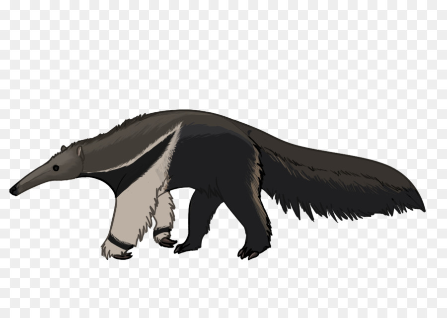 Anteater Png - Giant anteater Drawing Cartoon Sloth - others png download - 900 ...