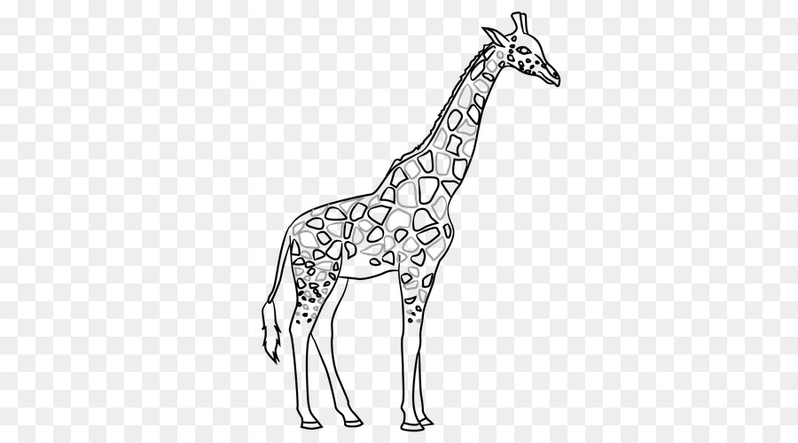 Free Giraffe In Plane Png - Giraffe Line art Contour drawing - color paperrplanes png download ...