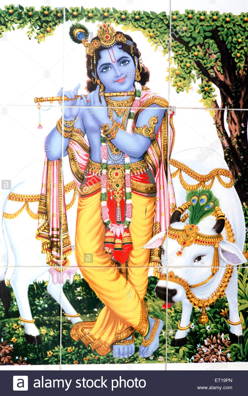 Krishna With Cow Png - God shri krishna with flute and cow painted on white tiles ; Amreli ;  Gujarat ;