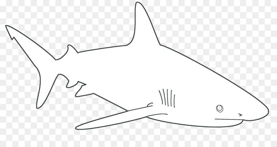 fish png template  u0026 free fish template png transparent