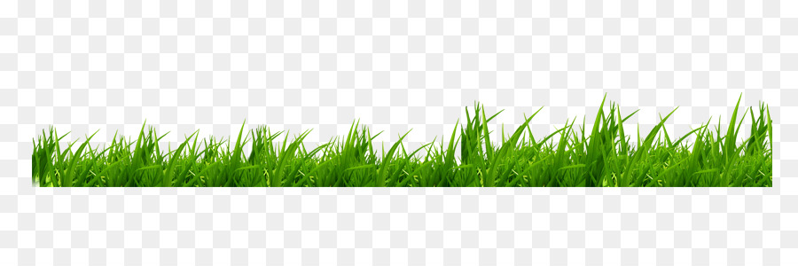 lawn grass png free lawn grass png transparent images 87042 pngio lawn grass png transparent
