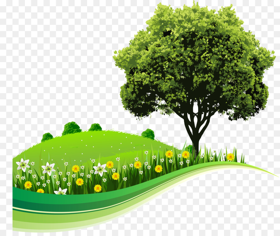 Nature Background Image Png - Green Grass Background
