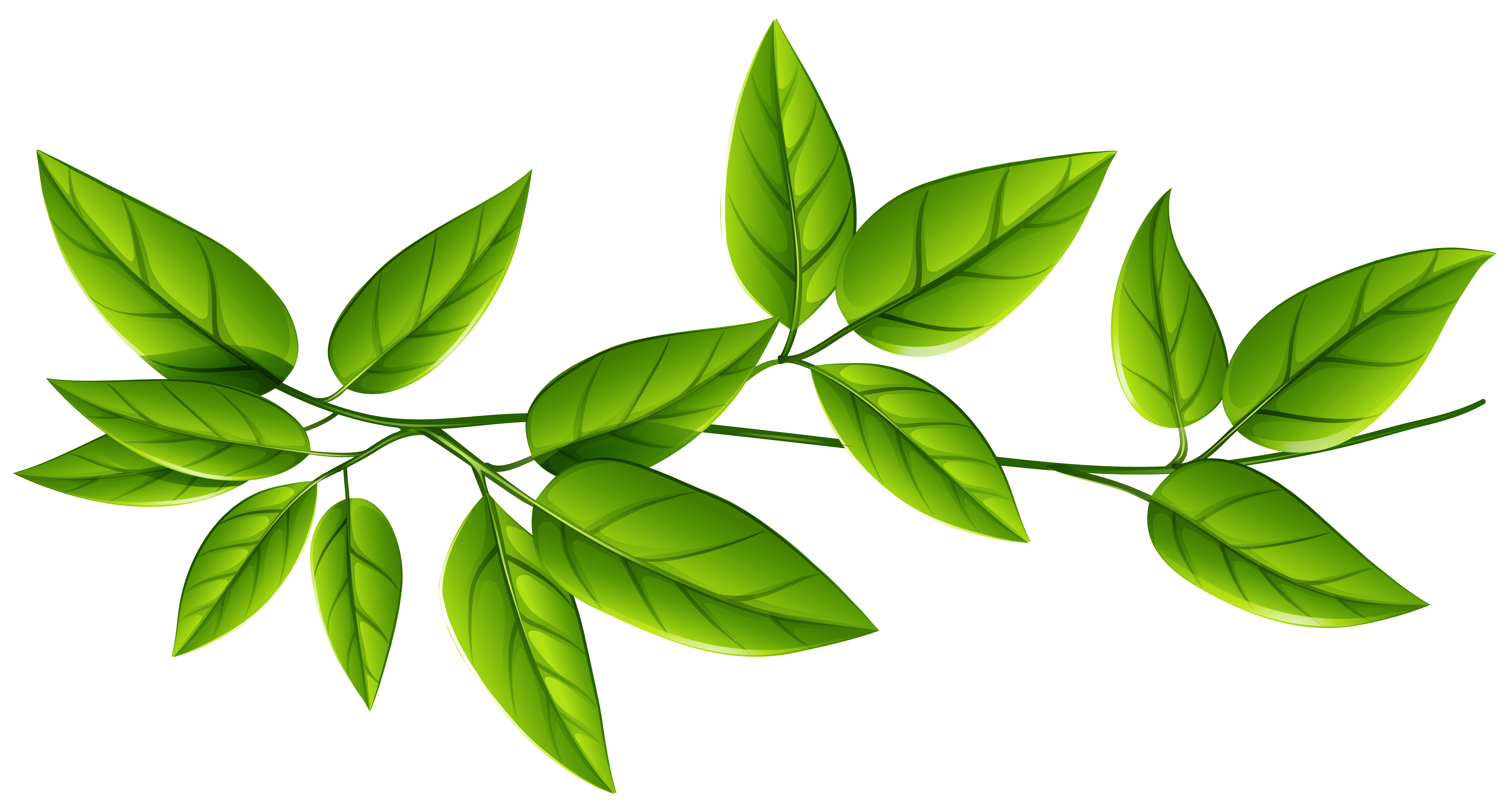 Png Leaf - Green Leaves PNG Image | Gallery Yopriceville - High-Quality ...