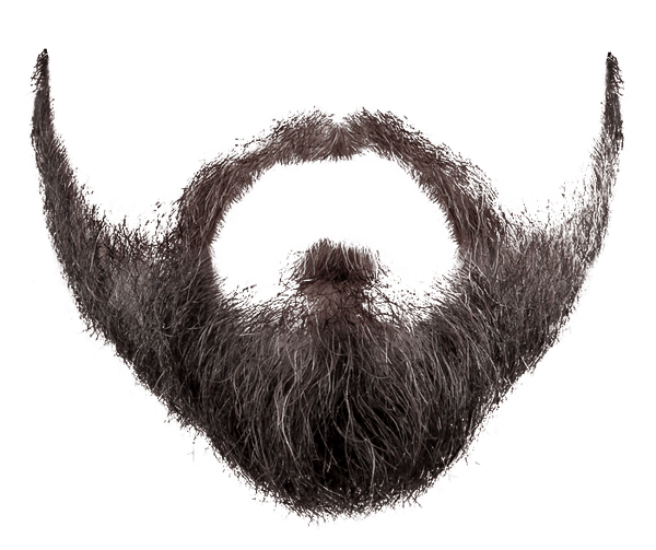 Black Beard Png - Grey Black Beard transparent PNG - StickPNG