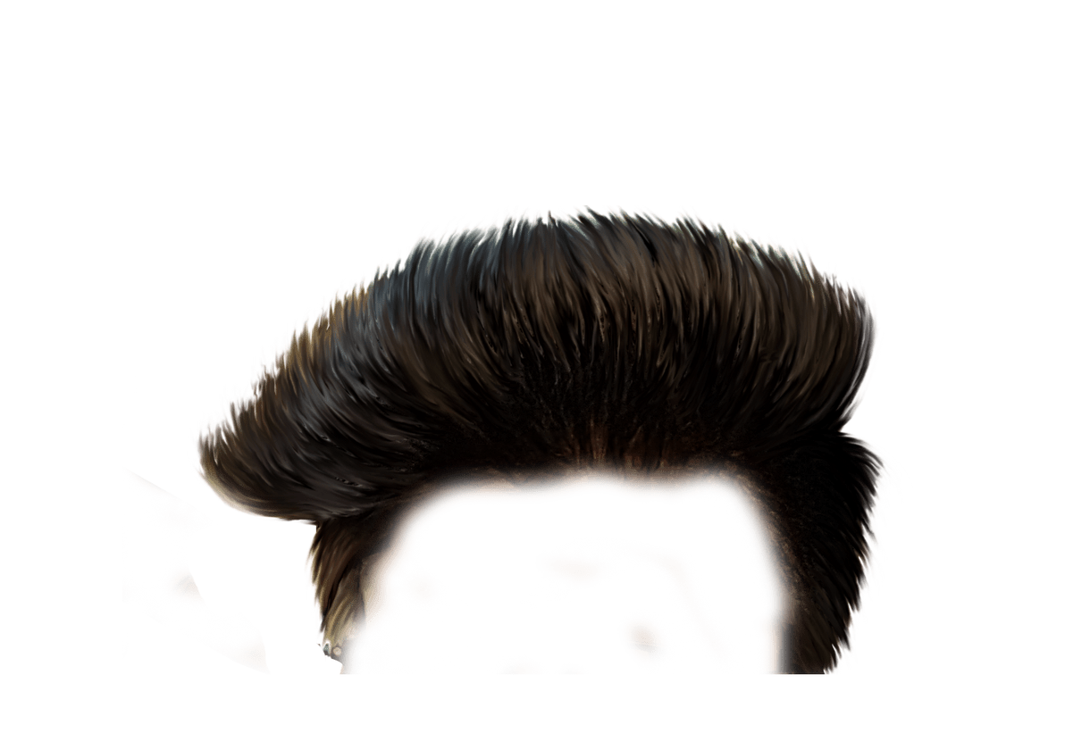 Hairstyles Png Transparent Images 1145 Pngio
