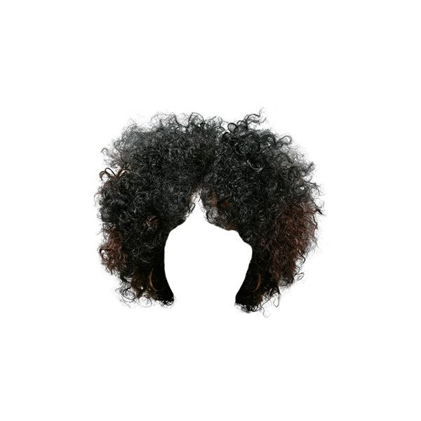 Afro Hair Png Transparent Images 1197 Pngio