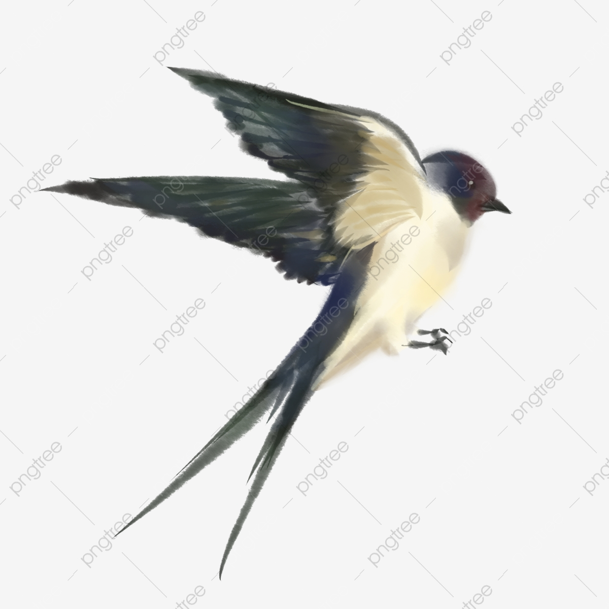Swallow Png - Hand Drawn Swallow Illustration Creative Swallow Illustration Cute ...
