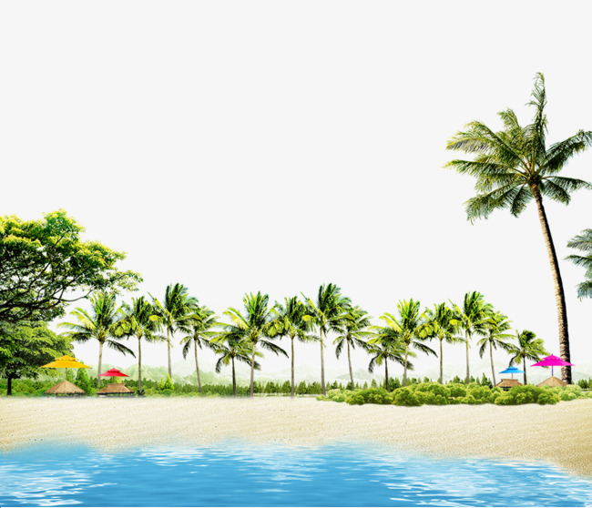 Beach Png - hawaii beach, Summer Sun, Holiday, Tree Lined PNG and PSD