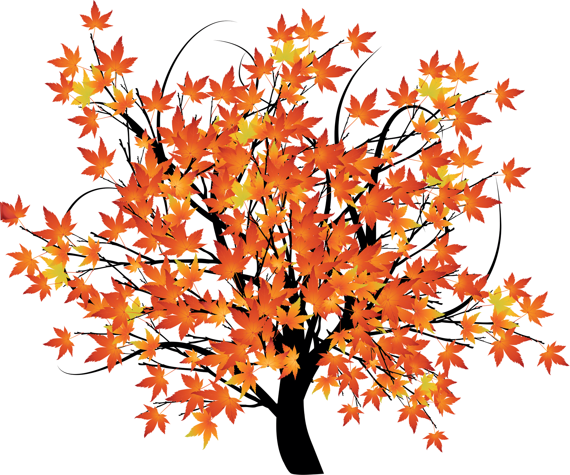 Fall Scene Png - HD An Autumn Background Scene With Trees - Maple Tree Cartoon ...