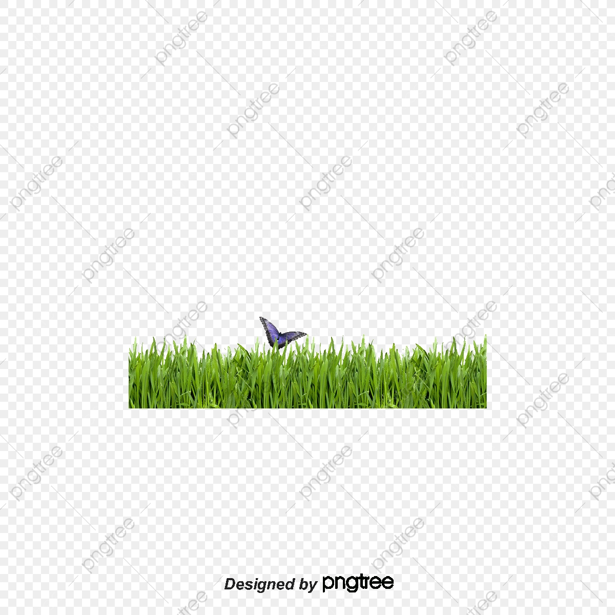 Hd Green Grass 1 Fuzzy Grass Background 570871 Png Images Pngio
