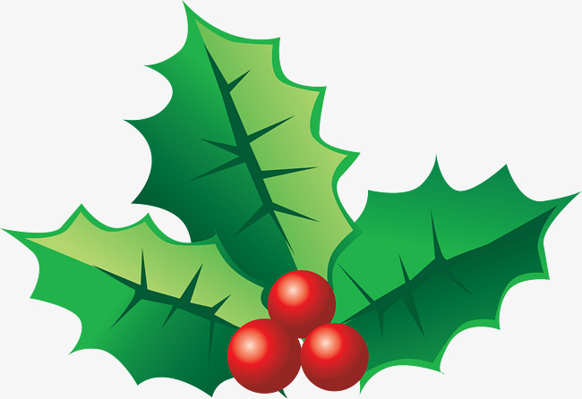 Christmas Holly Png.Holly Leaves Png Free Holly Leaves Png Transparent Images
