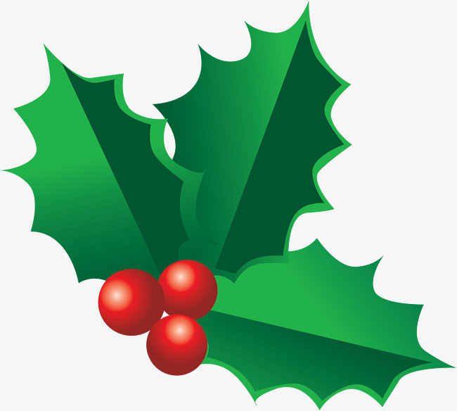 Christmas Holly Clip Art.Holly Decorations For Christmas Holly C 51716 Png Images