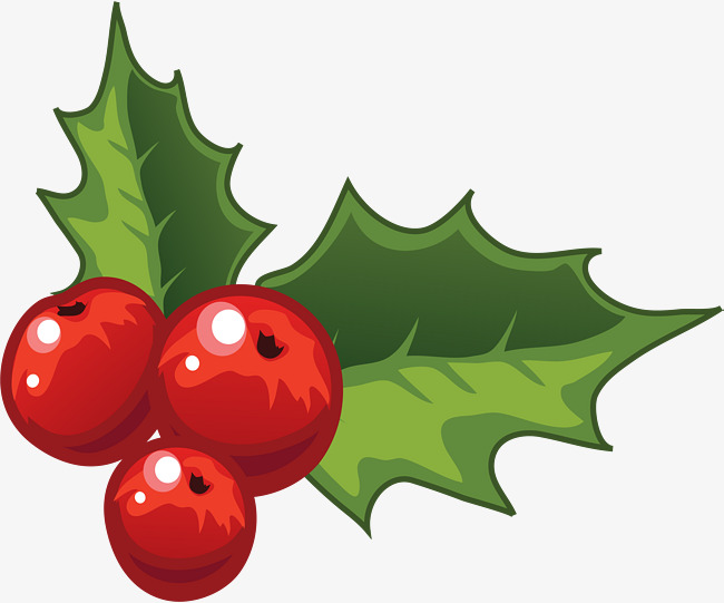 Christmas Holly Clip Art.Holly Decorations For Christmas Holly C 223192 Png