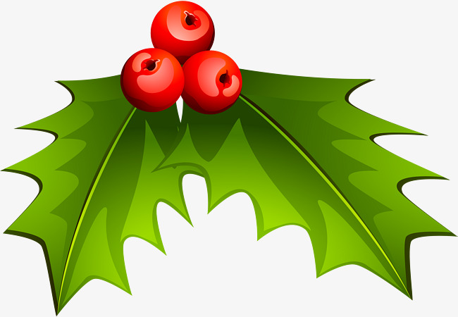 Christmas Holly Clipart Png.Holly Decorations For Christmas Holly C 625845 Png