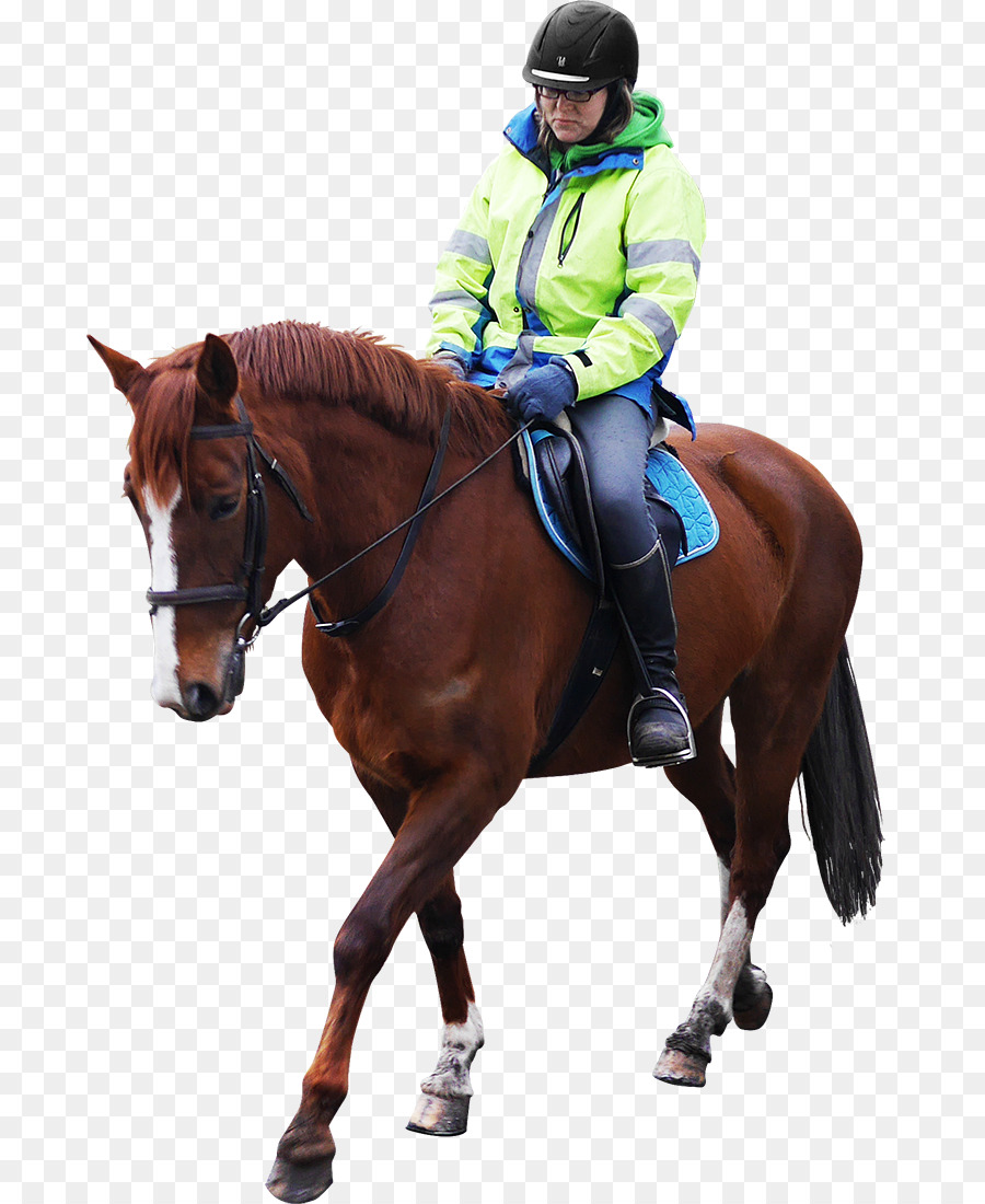 Man On A Horse Png - Horse and Man Equestrian Stable - RODEO png download - 741*1100 ...