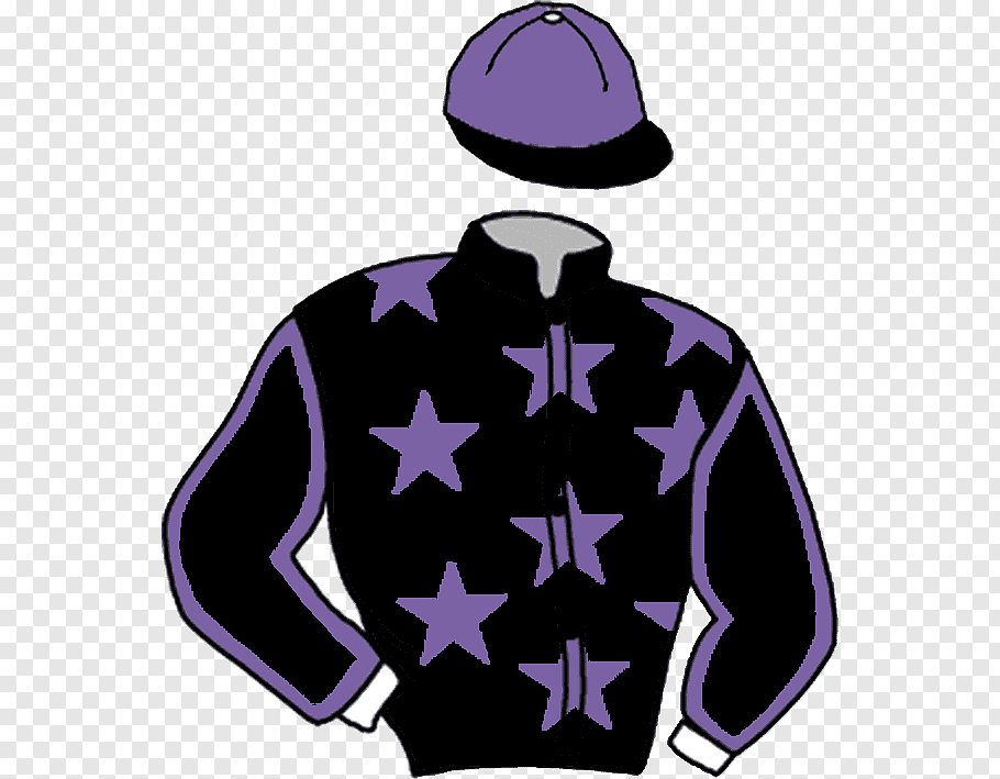 Draver Png - Horse stable racing silks Draver Hoodie, horse free png | PNGFuel