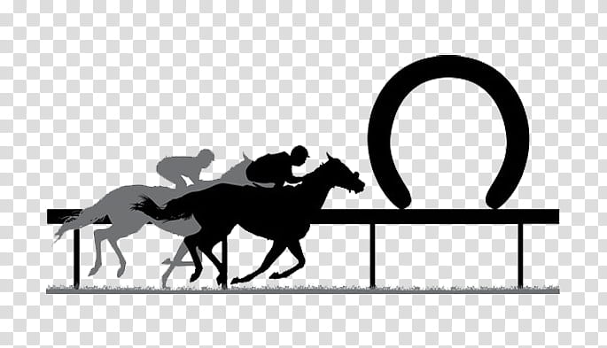 Tipster Png - Horse, Standardbred, Horse Racing, Thoroughbred, Race Track ...