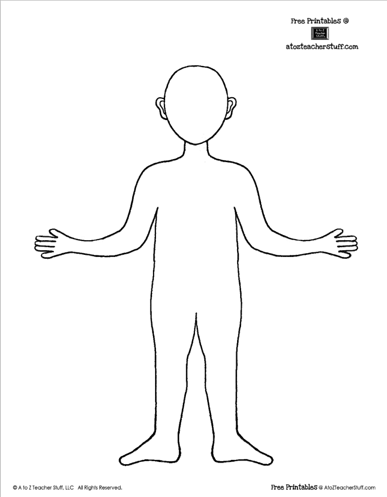 Human Body Template Drawing Face Clip Ar 1658410 Png Images Pngio
