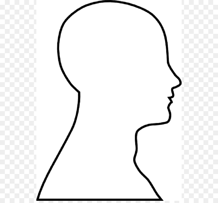 Head Outline Png - Human Skull Drawing png download - 600*831 - Free Transparent ...