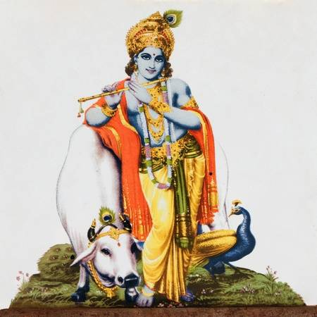 Krishna With Cow Png - image of hindu god Krishna with cow, peacock and flute on antique pottery  tile