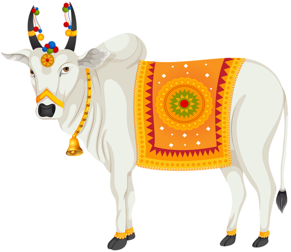 Indian Cow Png Images - India Holy Cow Transparent Clip Art Image