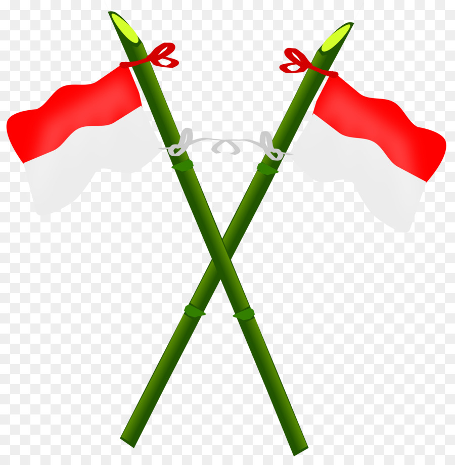 Bendera Indonesia Png Free Bendera Indonesia Png Transparent Images 51710 Pngio