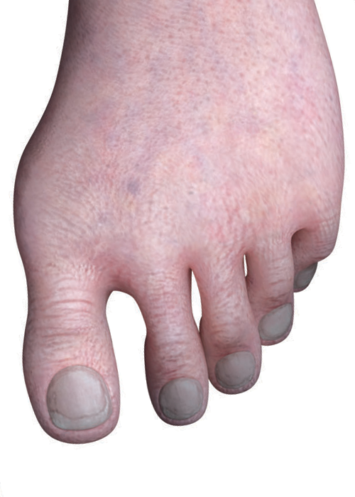 Jacks Feetpng 54482 Png Images Pngio