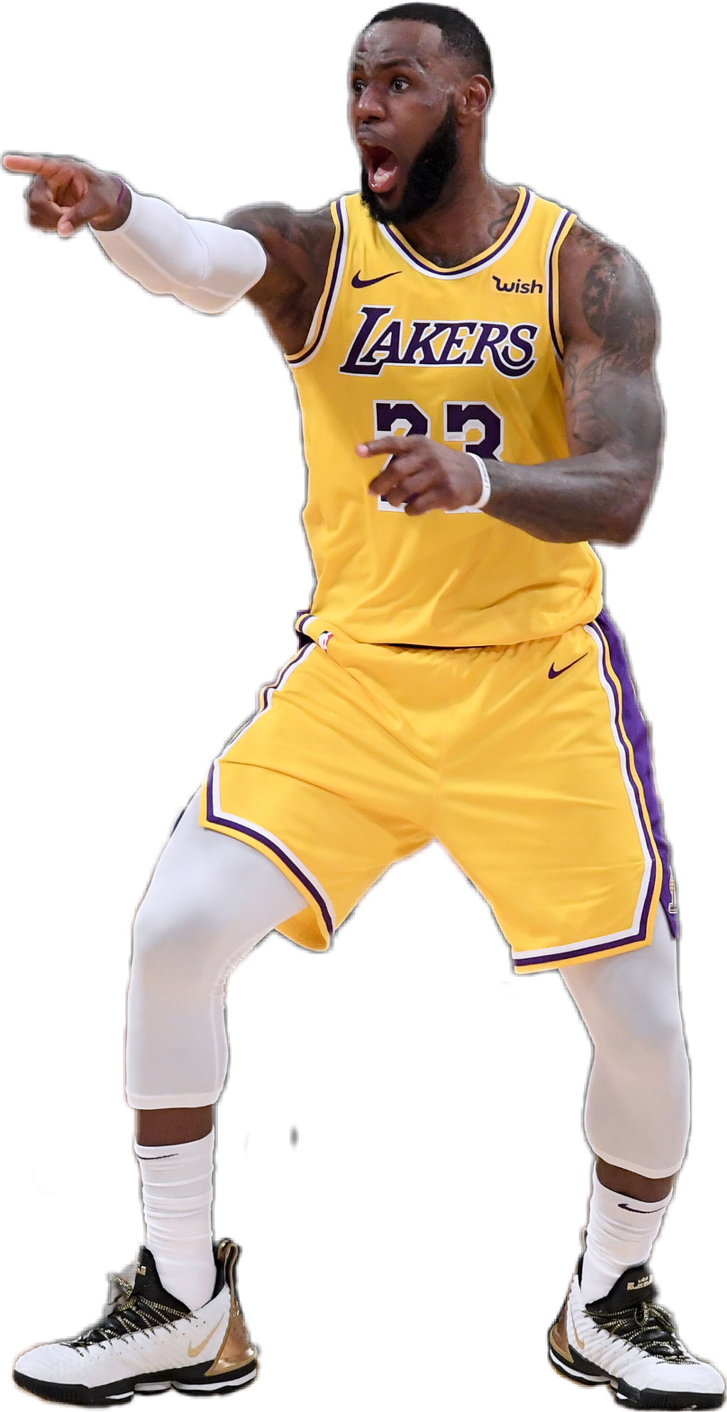 Lebron James Png Lakers Free Lebron James Lakers Png Transparent Images 47022 Pngio