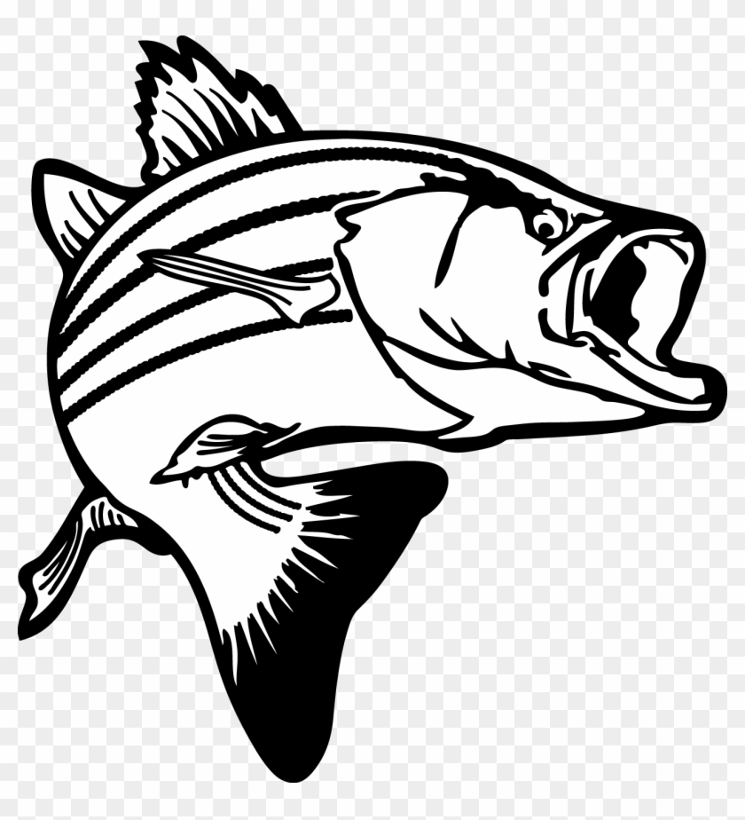 Bass Fishing Png Black And White - Jumping Bass Fish Clip Art - Fish Clipart Black And White - Free ...