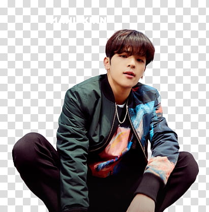 Kim Woojin Png - Kim Woojin of Stray Kids transparent background PNG clipart ...