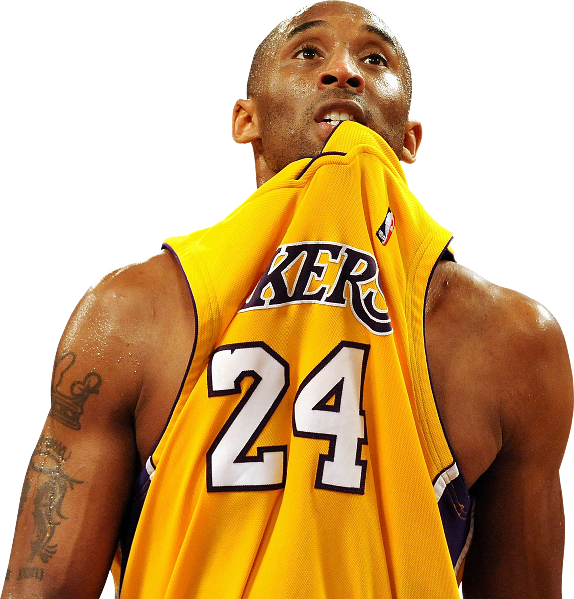 Kobe Bryant Transparent Free Kobe Bryant Transparent Png Transparent Images 45963 Pngio
