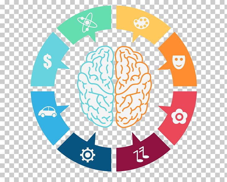 Lateralization Of Brain Function Png - Lateralization of brain function Computer Icons , dynamic PNG ...