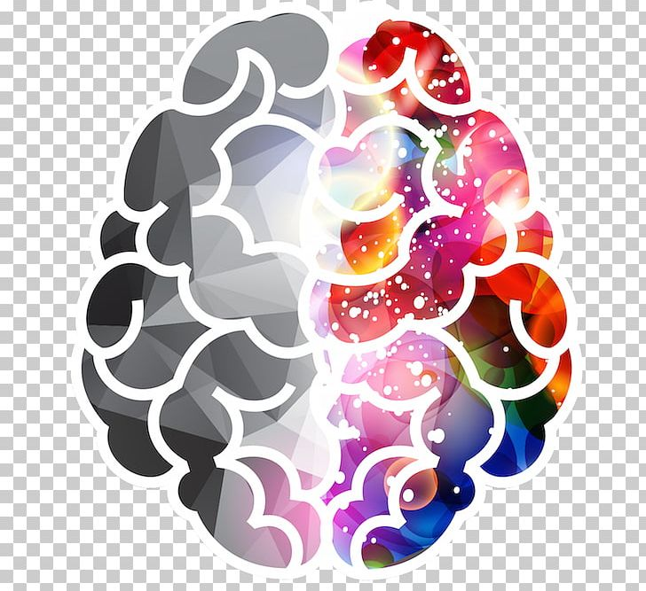 Lateralization Of Brain Function Png - Lateralization Of Brain Function Human Brain PNG, Clipart, Acute ...