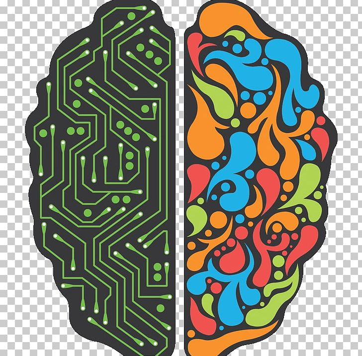 Lateralization Of Brain Function Png - Lateralization Of Brain Function Neuroimaging Human Brain ...