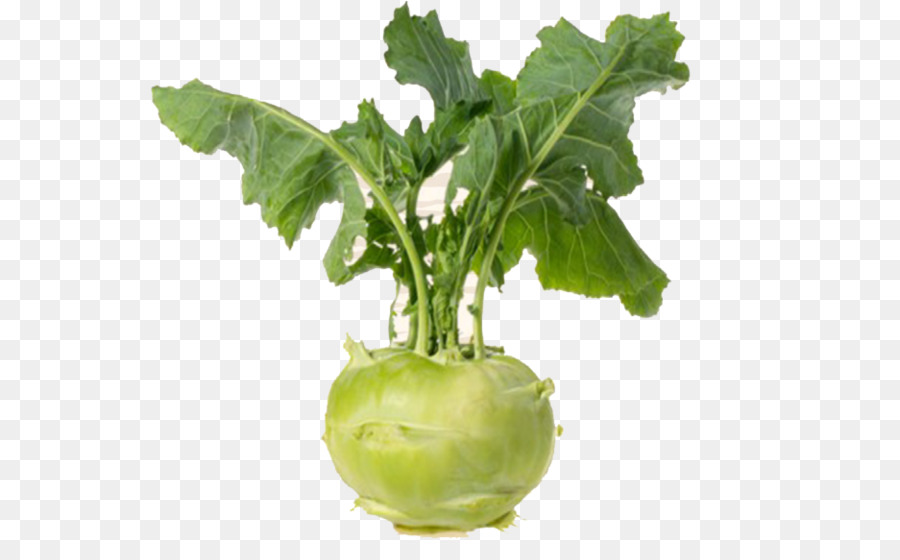 Kohlrabi Png - Leaf Cartoon