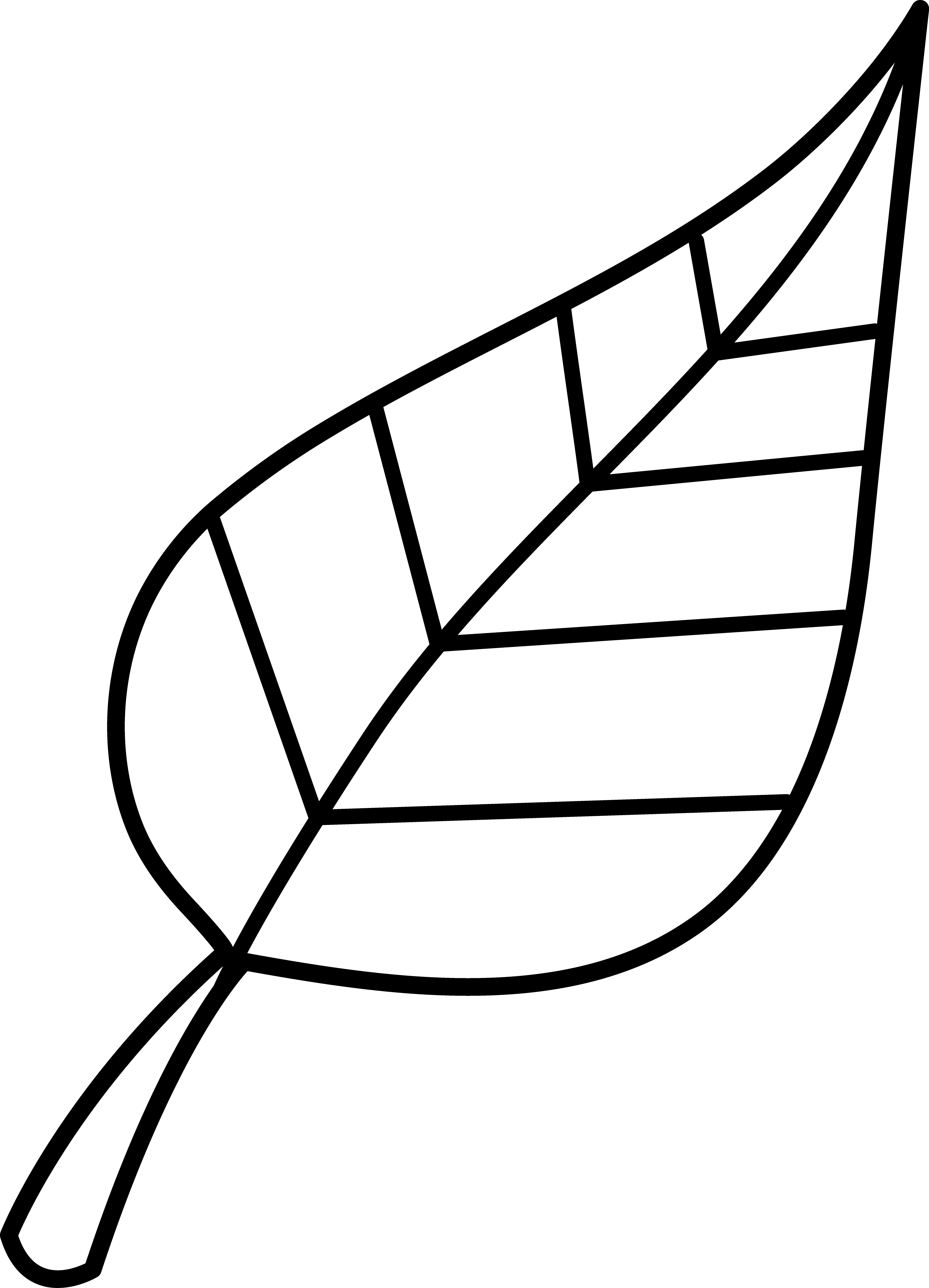 Black And White Png Leaf - Leaf Images Black And White Group with 48+ items