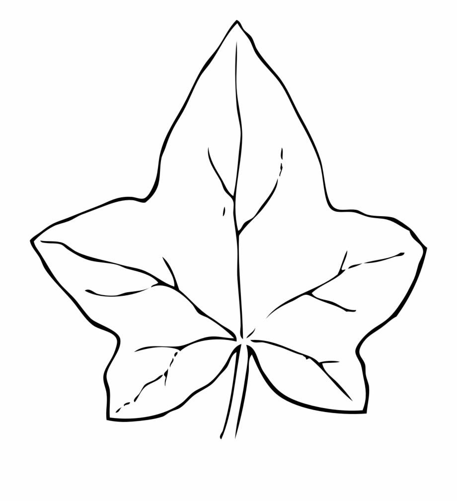 Black And White Leaf Png - Leaves Black And White Fall Leaves Clipart Black And - Leaf Clip ...