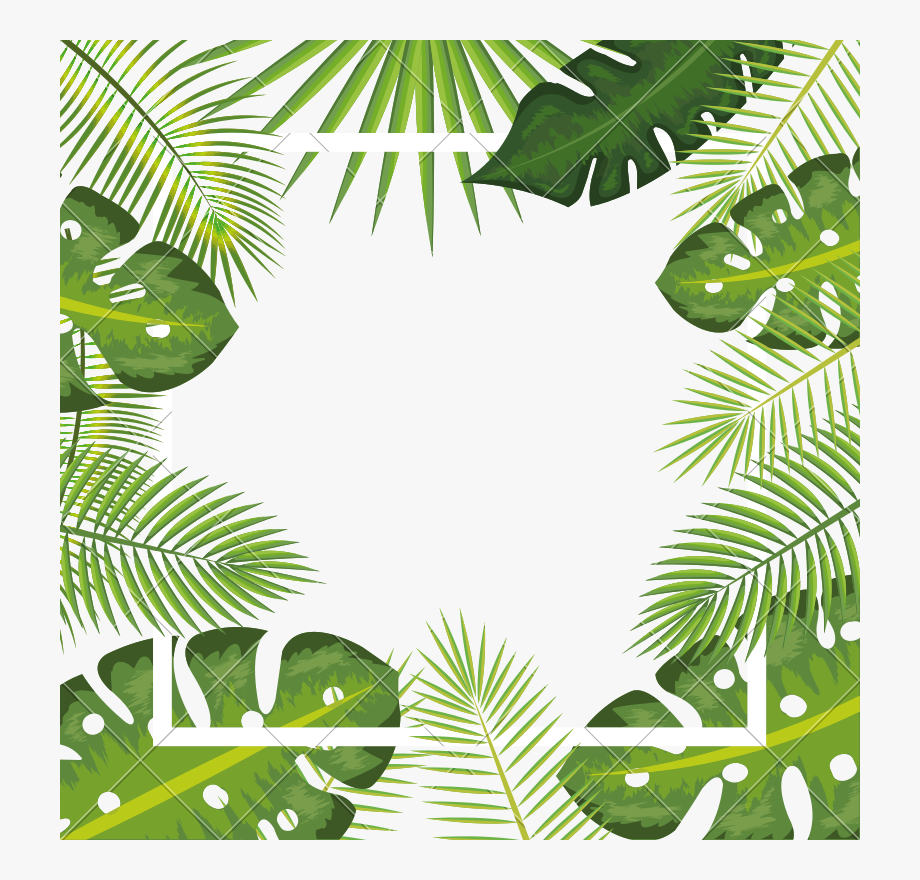 Tropical Background Png - Leaves Frame Background - Tropical Frame Png Transparent #1291657 ...