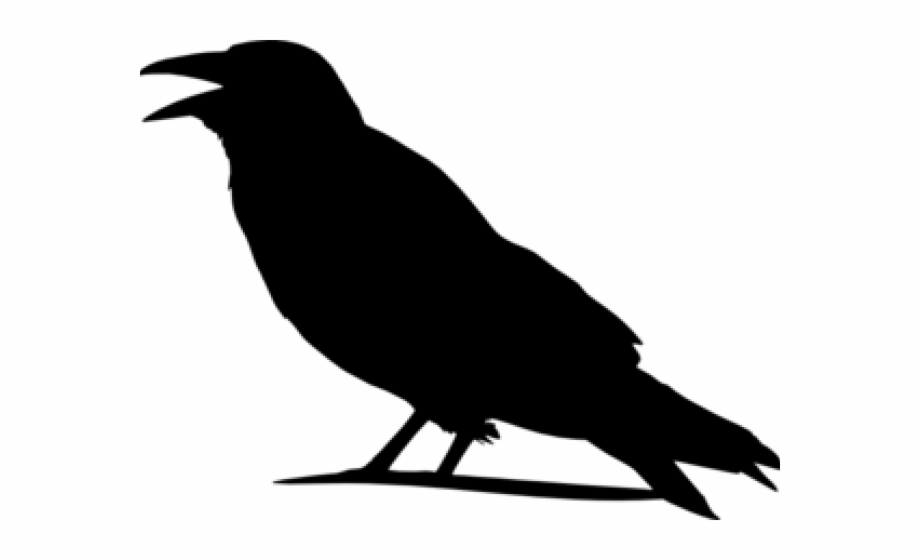 Crow Outline Png - Library of crow outline banner royalty free download png files ...