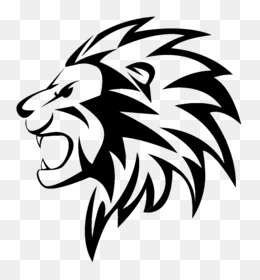 Female Lion Drawings Png - Lion Drawing PNG - Cartoon Lion Drawings, Realistic Lion Drawings ...