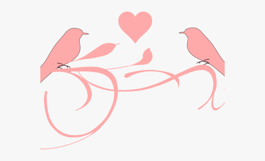 Love Bird Png Love Birds Black And Whi 1148160 Png Images Pngio