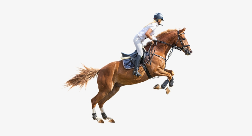 Man On A Horse Png - Man Riding Horse Png PNG Image | Transparent PNG Free Download on ...