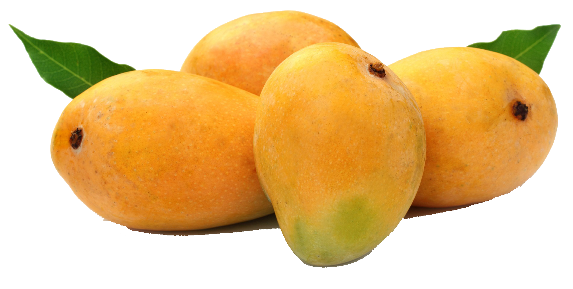 Png Of Mango - Mango PNG HD Images #8232 - PNG Images - PNGio