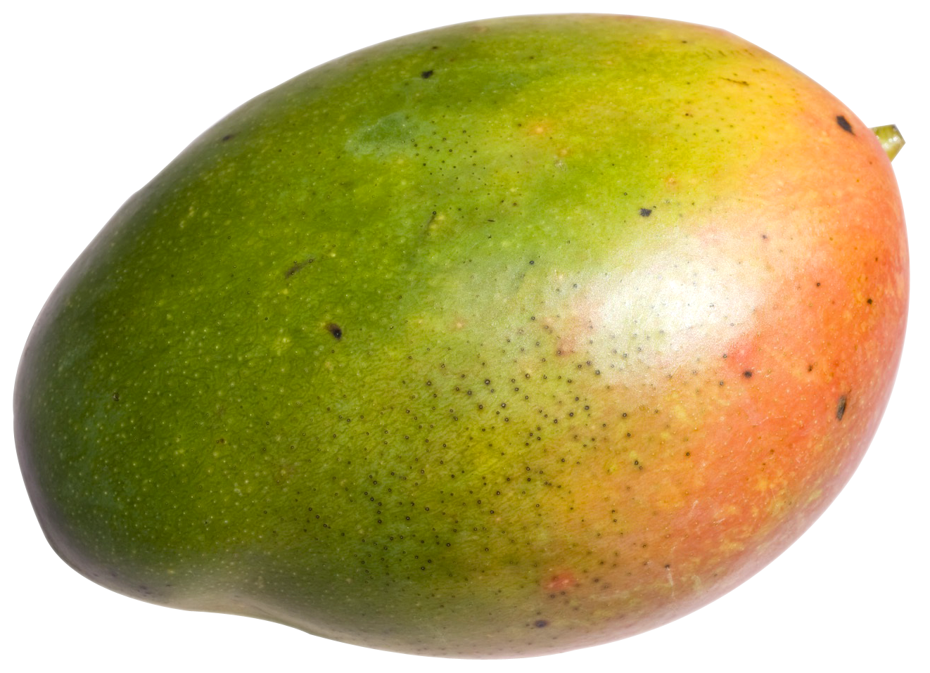 Png Of Mango - Mango PNG Transparent Free Images   PNG Only