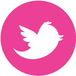 Media Pink Round Social Twitter Icon Png Images Pngio