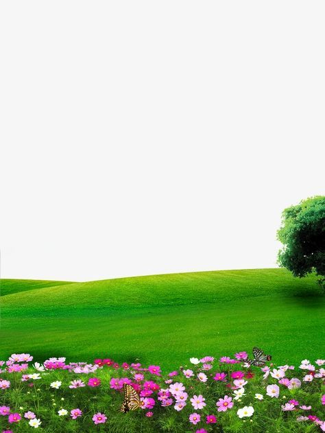 Nice Nature Png For Phone Free Nice Nature For Phone Png Transparent Images 61040 Pngio