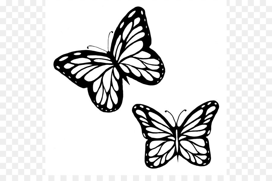Butterfly outline black. And white png free