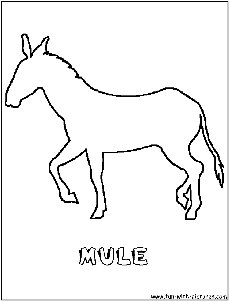 Coloring book page. Sketch outline and color version. Coloring for ... | 1050x800