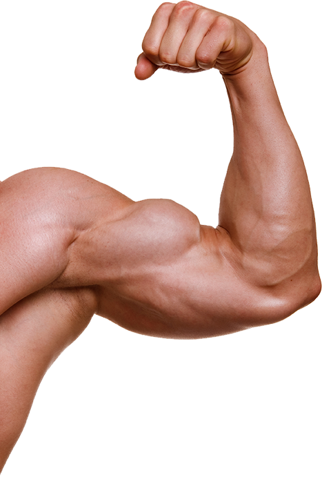 Muscle Png - Muscle hand PNG image with transparent background