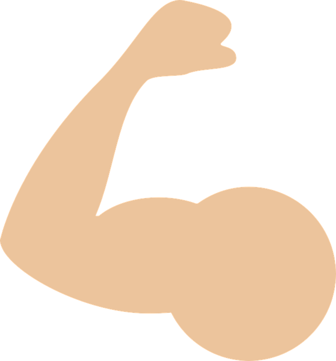 Muscle Png - Muscle PNG